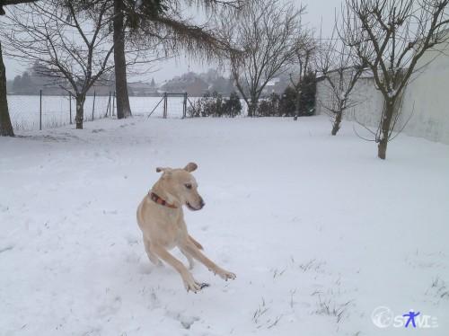 Hey, das war ein Ball aus Schnee!
